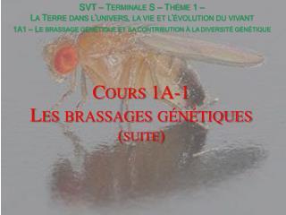 Cours 1A-1 Les brassages génétiques (suite)