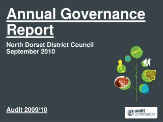 Annual Governance Report