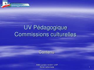 UV Pédagogique Commissions culturelles