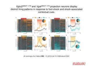 JH Jennings et al. Nature 000 , 1-5 (2013) doi:10.1038/nature12041