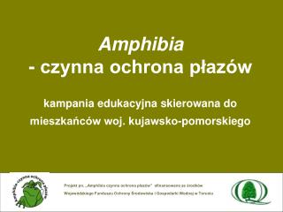 Cele projektu: podniesienie świadomości ekologicznej społeczeństwa w zakresie ochrony płazów,