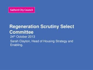 Regeneration Scrutiny Select Committee
