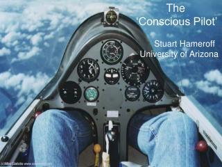 The 'Conscious Pilot'