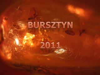 BURSZTYN 2011
