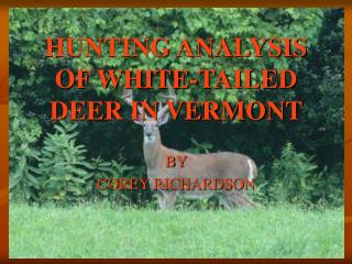 HUNTING ANALYSIS OF WHITE-TAILED DEER IN VERMONT