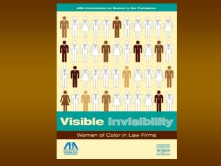 Visible Invisibility