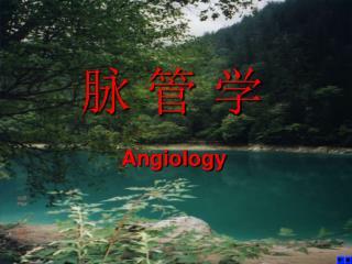 Angiology