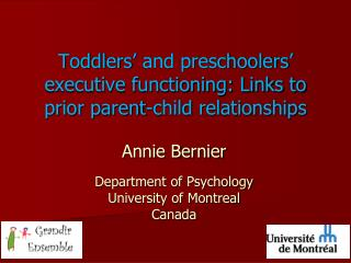 Toddlers' and preschoolers' executive functioning: Links to prior  parent- child relationships