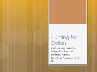 Hunting for Dollars