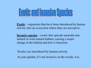 Exotic and Invasive Species