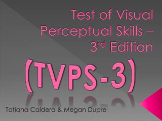Test of Visual Perceptual Skills –  3 rd  Edition