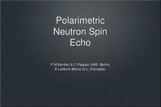 Polarimetric Neutron Spin Echo