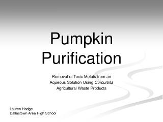 Pumpkin  Purification