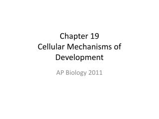 Chapter 19 Cellular Mechanisms of Development