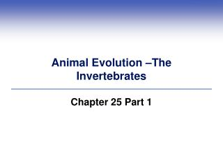 Animal Evolution –The  Invertebrates