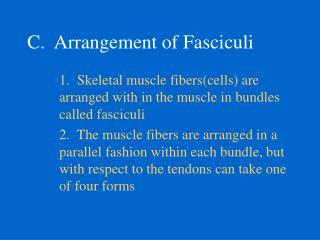 C. Arrangement of Fasciculi