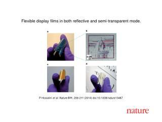 P Hosseini et al. Nature 511 , 206-211 (2014) doi:10.1038/nature13487