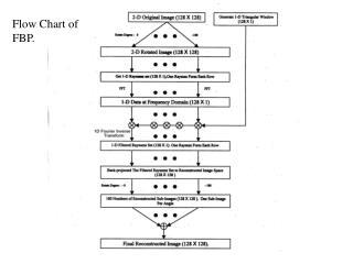 Flow Chart of FBP.