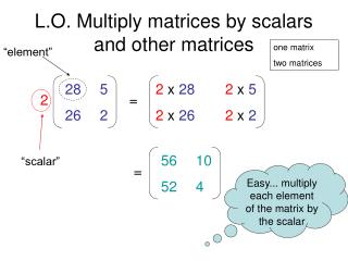 L.O. Multiply matrices by scalars and other matrices
