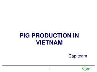 PIG PRODUCTION IN VIETNAM