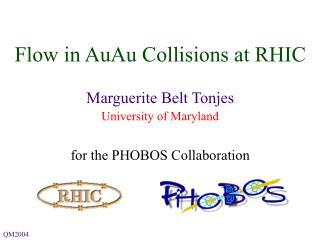 Flow in AuAu Collisions at RHIC