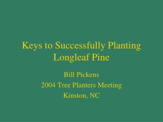 Keys to Successfully Planting Longleaf Pine