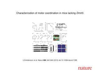 LS Andersson et al. Nature 488 , 642-646 (2012) doi:10.1038/nature11399
