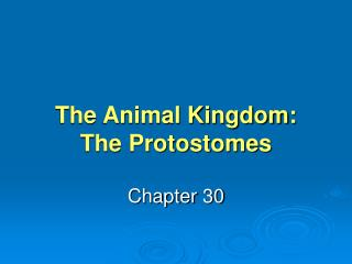 The Animal Kingdom: The Protostomes
