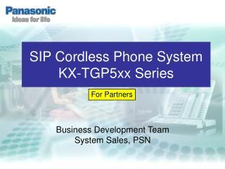 Business Development Team System Sales, PSN
