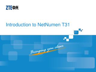 Introduction to NetNumen T31