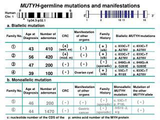 MUTYH -germline mutations and manifestations
