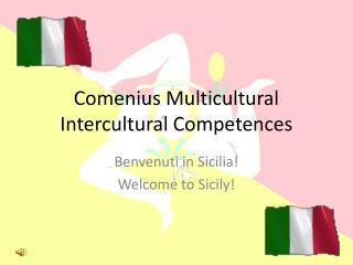 Comenius Multicultural  Intercultural Competences