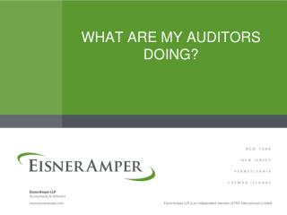WHAT ARE MY AUDITORS DOING?