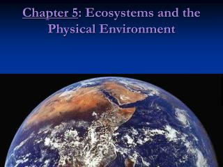 Chapter 5 : Ecosystems and the Physical Environment