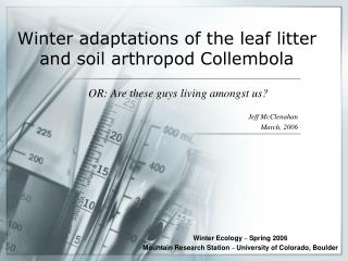 Winter adaptations of the leaf litter and soil arthropod Collembola