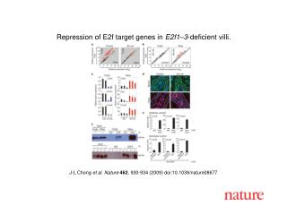 J-L Chong et al. Nature 462 , 930-934 (2009) doi:10.1038/nature08677