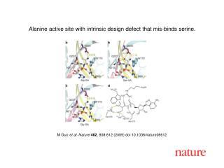M Guo et al. Nature 462 , 808 -8 12 (2009) doi:10.1038/nature08612