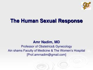 The Human Sexual Response