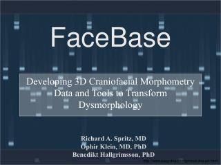 FaceBase