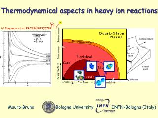 Thermodynamical aspects in heavy ion reactions