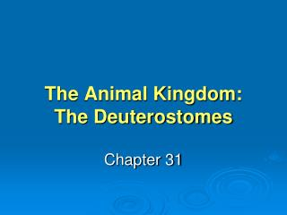 The Animal Kingdom: The Deuterostomes