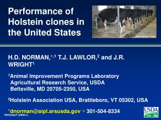 Performance of Holstein clones in the United States