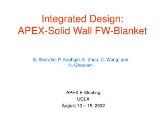 Integrated Design: APEX-Solid Wall FW-Blanket
