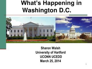 What's Happening in Washington D.C.