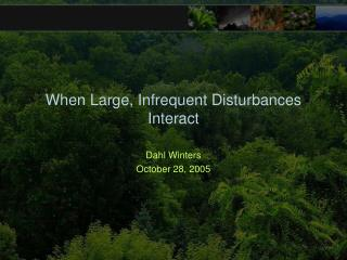 When Large, Infrequent Disturbances Interact
