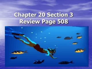 Chapter 20 Section 3 Review Page 508
