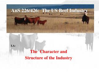 AnS 226/426:  The US Beef Industry