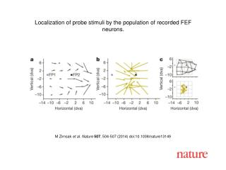 M Zirnsak et al. Nature 507 , 504-507 (2014) doi:10.1038/nature13149