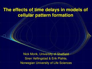 The effects of time delays in models of cellular pattern formation