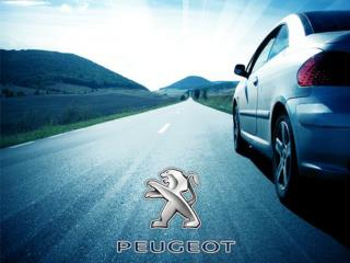 Peugeot in Brief